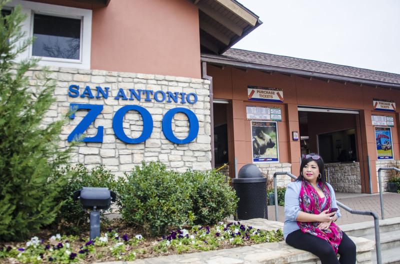 Since opening in 1914, the San Antonio Zoo has grown into 56 acres of land and currently houses over 8,500 animals. The zoo will celebrate its 100th anniversary. Photo taken by Matthew Brink.