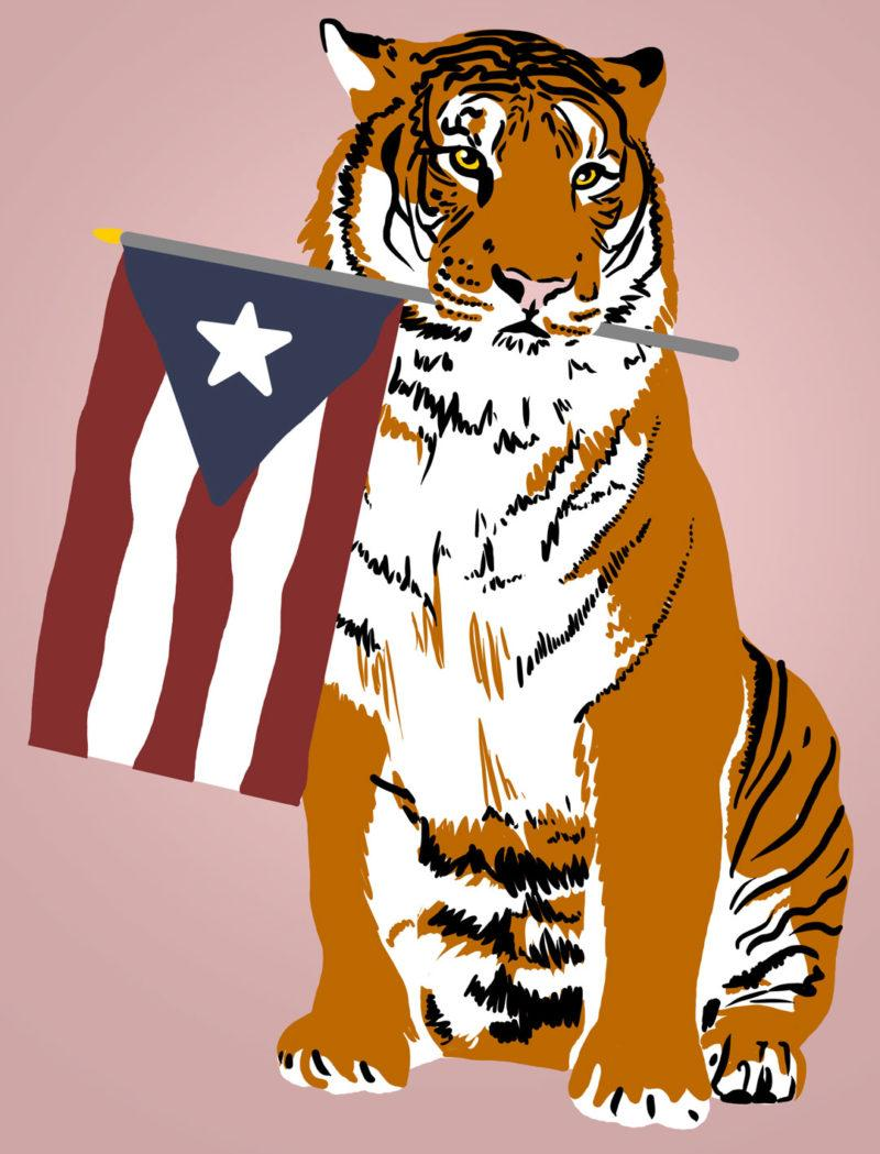 After Hurricane Maria hit Puerto Rico, first-year Jenna Shultz approached TUVAC to discuss ways the university could help. The group has created a GoFundMe page to help support the soldiers of Puerto Rico and their families. illustration by Andrea Nebhut